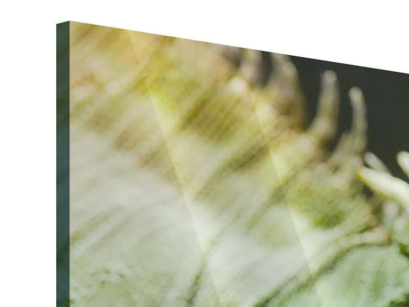 Acrylglasbild 3-teilig modern XXL Leguan