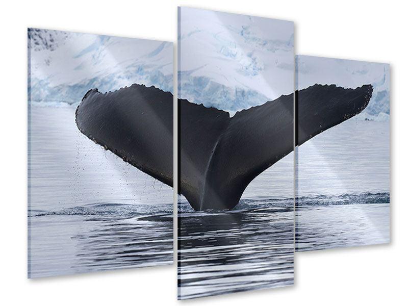 Acrylglasbild 3-teilig modern Der Buckelwal