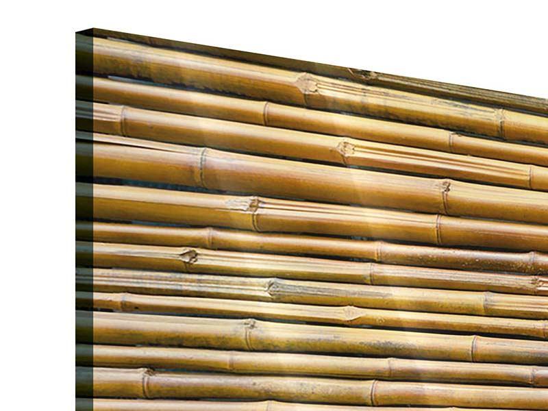 Acrylglasbild 3-teilig modern Bambus