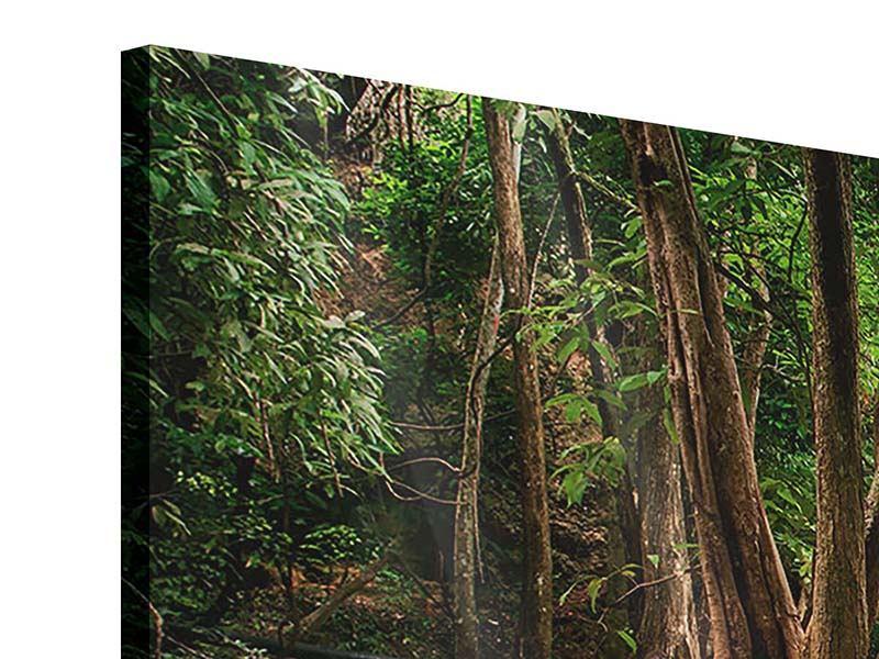 Acrylglasbild 3-teilig modern Deep Forest
