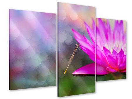 Acrylglasbild 3-teilig modern Besuch bei der Seerose
