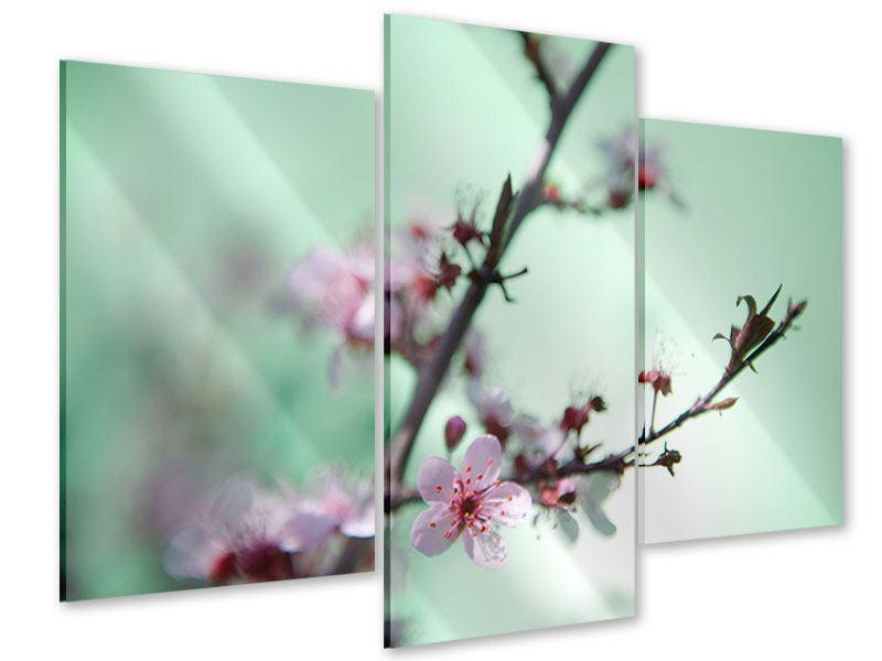 Acrylglasbild 3-teilig modern Die japanische Kirschblüte