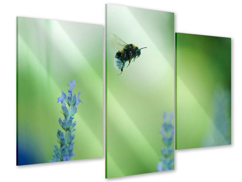 Acrylglasbild 3-teilig modern Die Biene