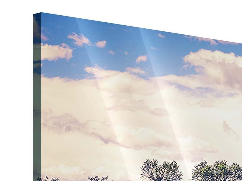 Acrylglasbild 3-teilig modern Das Lavendelfeld