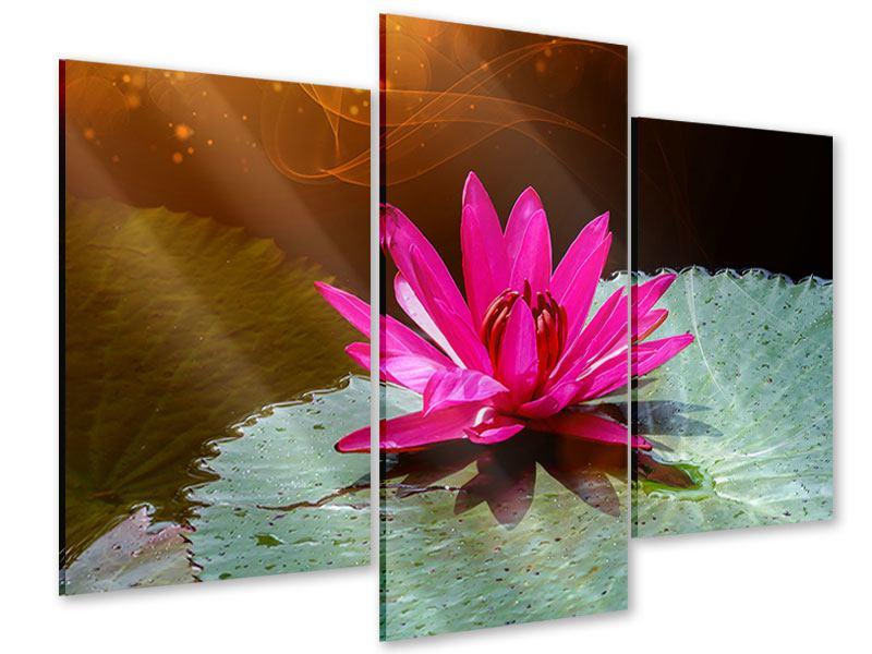 Acrylglasbild 3-teilig modern Der Frosch und das Seerosenblatt