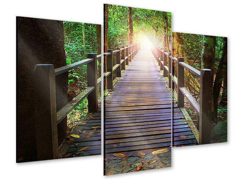 Acrylglasbild 3-teilig modern Die Brücke im Wald