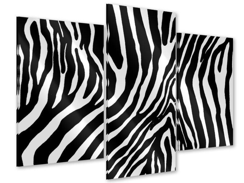 Acrylglasbild 3-teilig modern Zebramuster