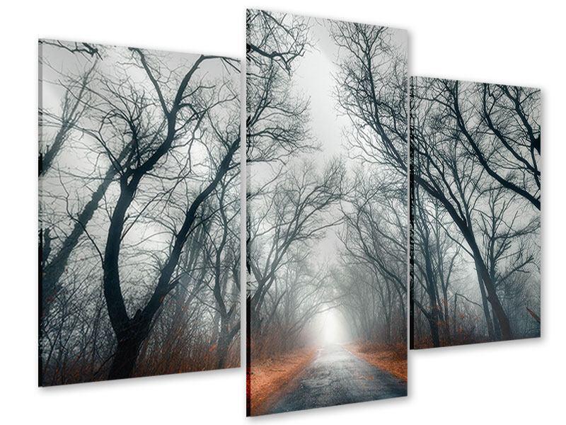 Acrylglasbild 3-teilig modern Mysteriöse Stimmung im Wald