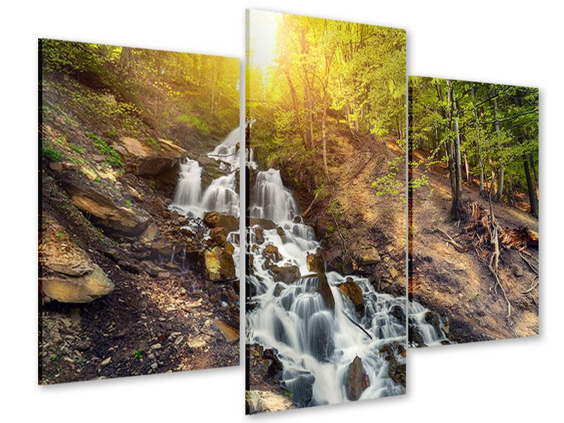 Acrylglasbild 3-teilig modern Naturschönheit