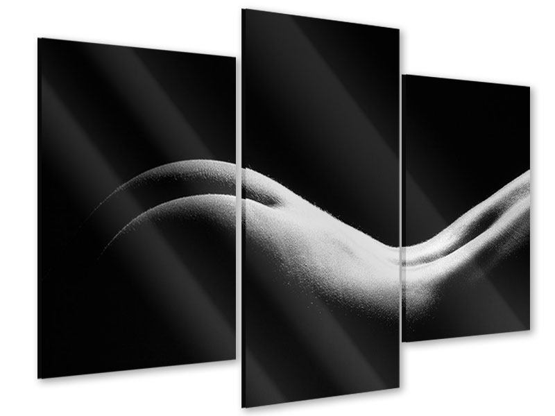 Acrylglasbild 3-teilig modern Nude