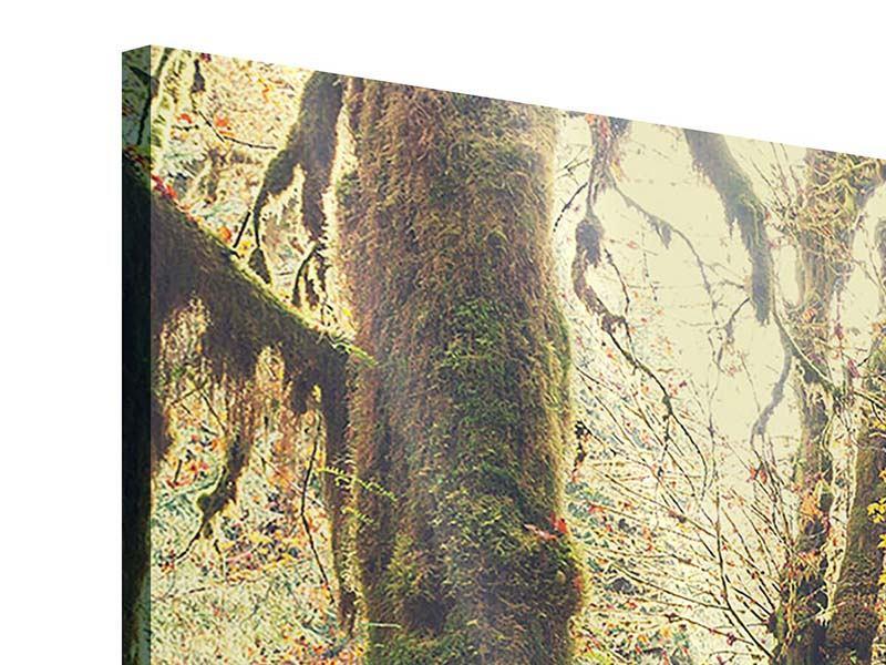 Acrylglasbild 3-teilig modern Feenwald