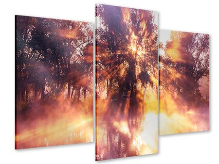 Acrylglasbild 3-teilig modern Die Waldspiegelung