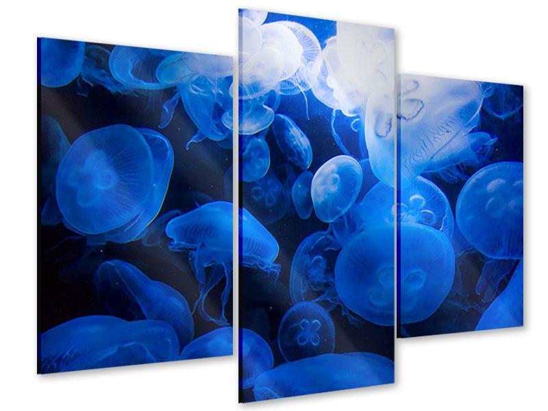 Acrylglasbild 3-teilig modern Quallen