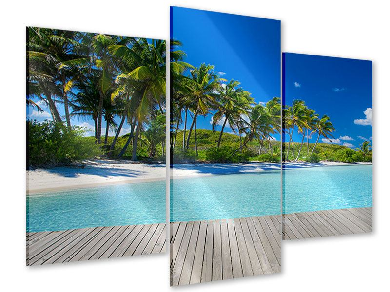 Acrylglasbild 3-teilig modern Standpalmen