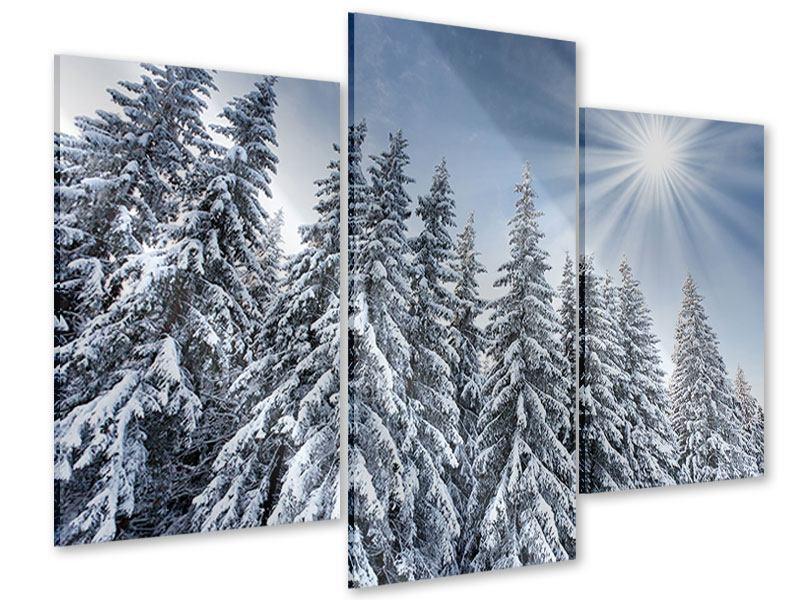 Acrylglasbild 3-teilig modern Wintertannen
