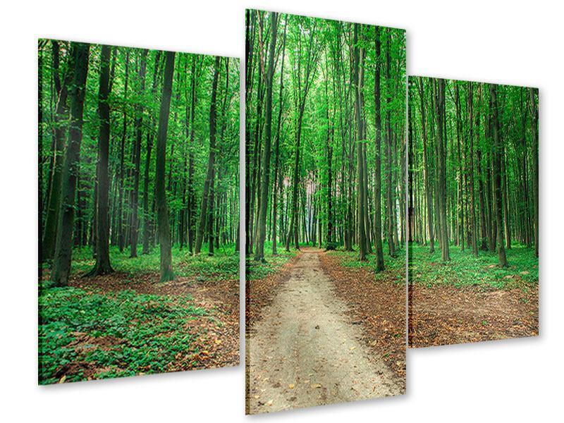 Acrylglasbild 3-teilig modern Tannenwald
