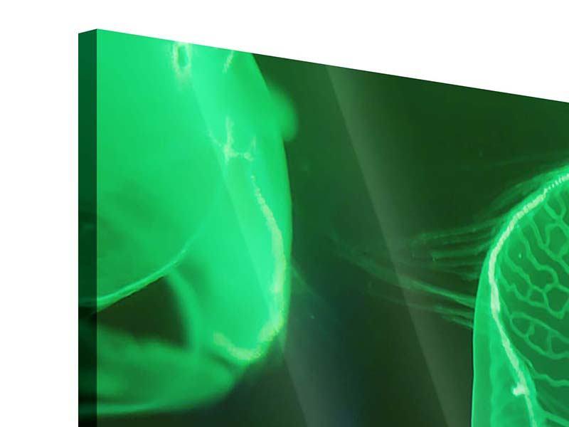 Acrylglasbild 3-teilig modern Quallen im Licht