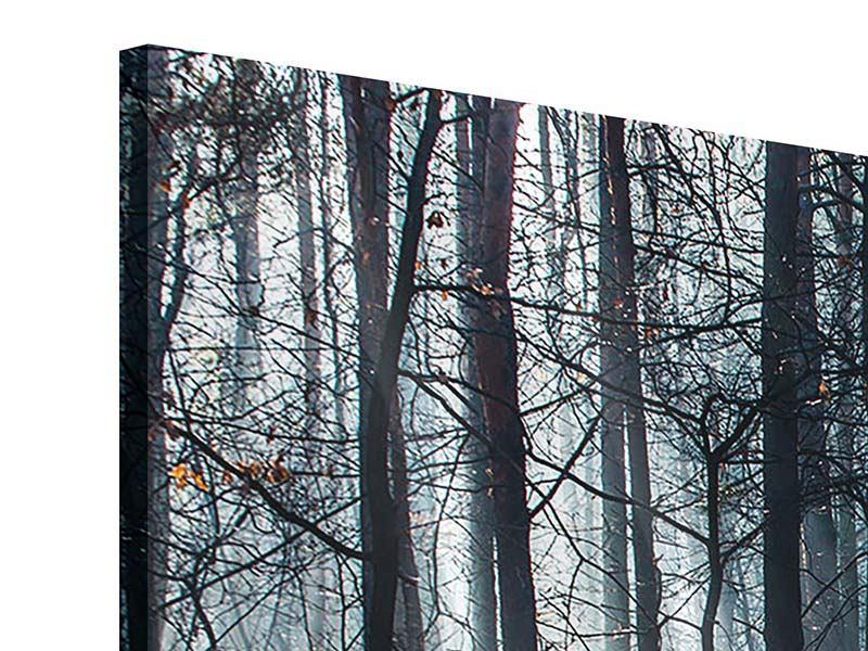 Acrylglasbild 3-teilig modern Wald im Lichtstrahl