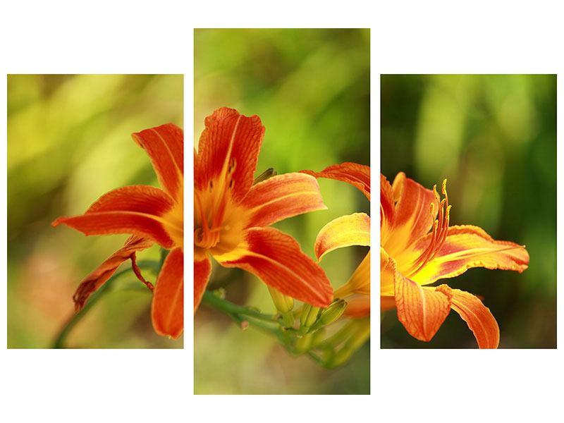 Acrylglasbild 3-teilig modern Natural Lilien