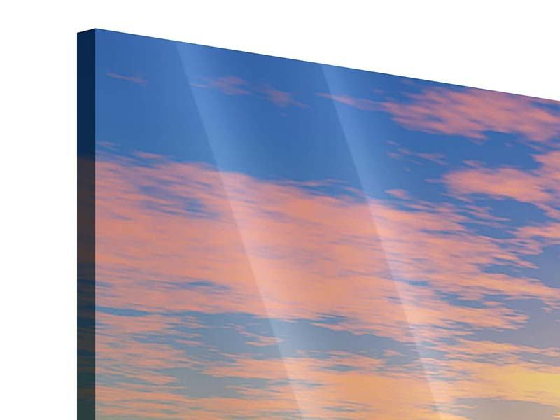 Acrylglasbild 3-teilig modern Blumenpanorama bei Sonnenuntergang