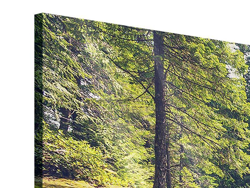 Acrylglasbild 3-teilig modern Flussströmung