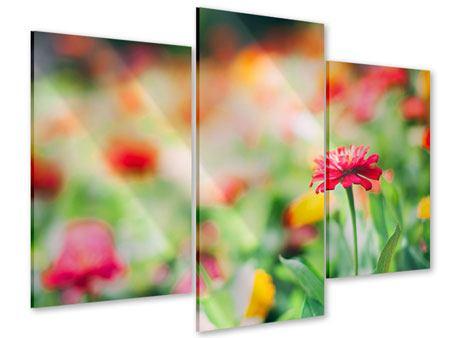 Acrylglasbild 3-teilig modern Im Blumengarten