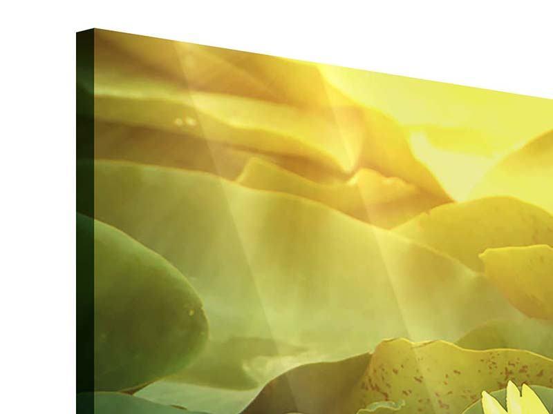 Acrylglasbild 3-teilig modern Wilde Lotus