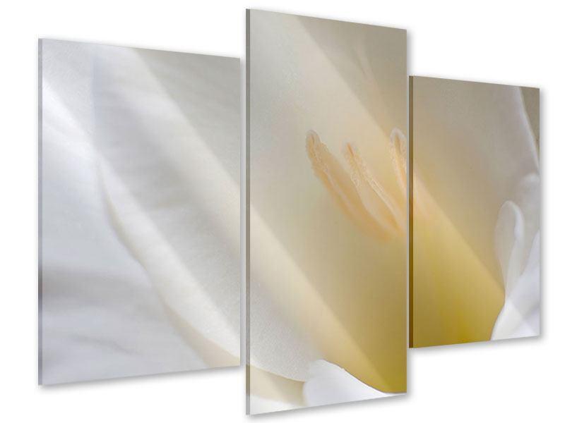 Acrylglasbild 3-teilig modern In einer Blüte