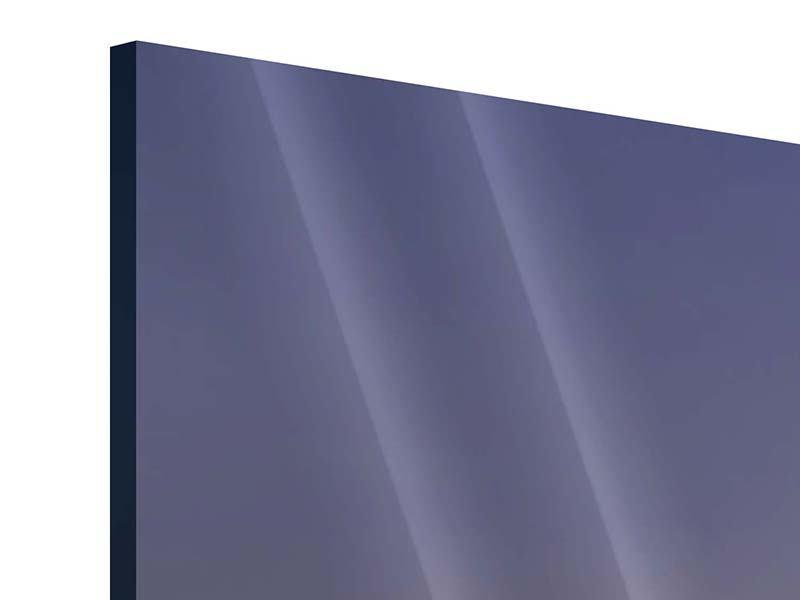 Acrylglasbild 3-teilig modern Skyline Mit dem Boot vor Sydney