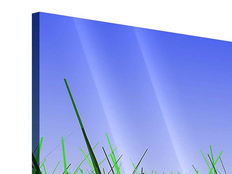 Acrylglasbild 3-teilig modern Im Gras