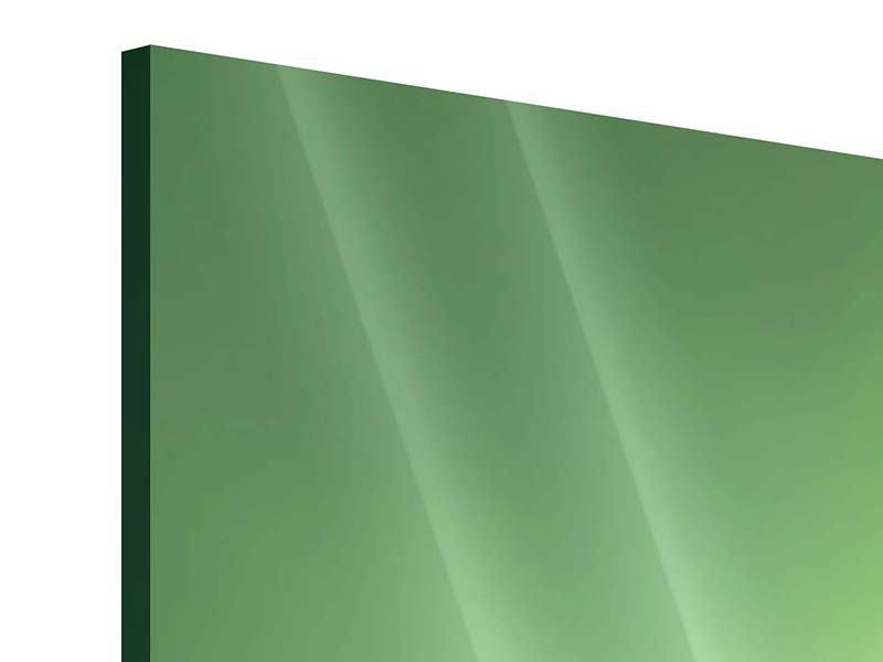 Acrylglasbild 3-teilig modern Marienkäfer XXL