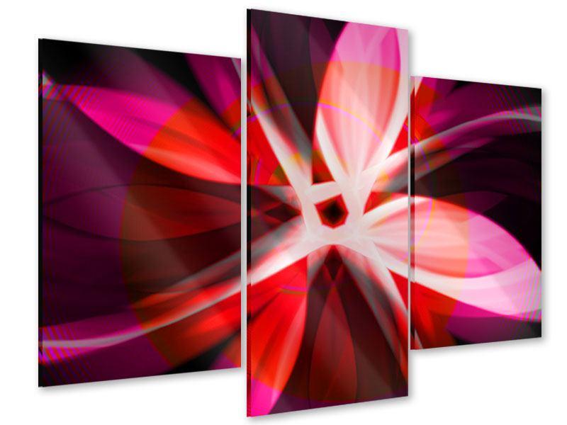 Acrylglasbild 3-teilig modern Abstrakt Flower Power