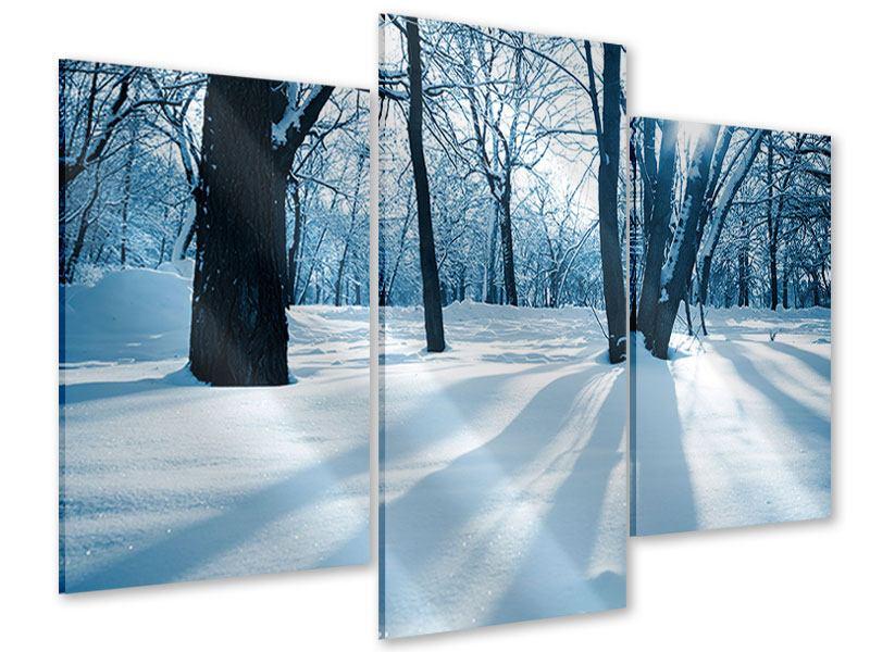 Acrylglasbild 3-teilig modern Der Wald ohne Spuren im Schnee