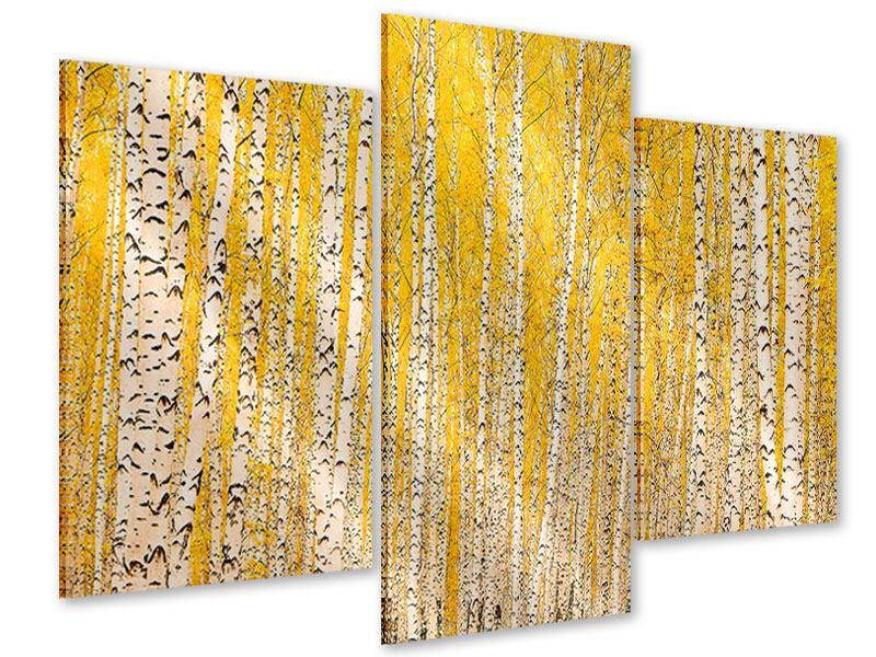 Acrylglasbild 3-teilig modern Der Birkenwald im Herbst