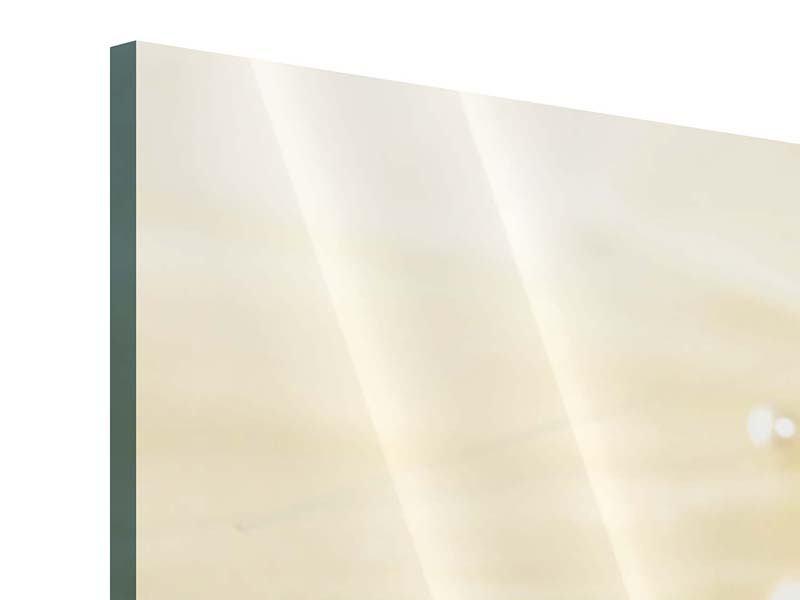 Acrylglasbild 3-teilig modern Trauringe