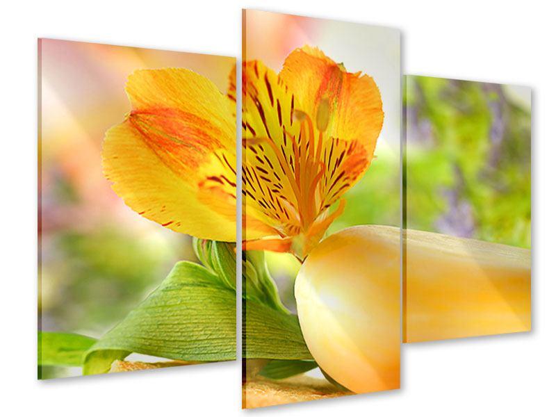 Acrylglasbild 3-teilig modern Lilien-Frühstück