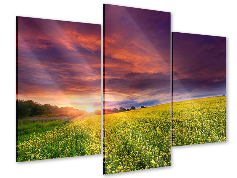 Acrylglasbild 3-teilig modern Abenddämmerung