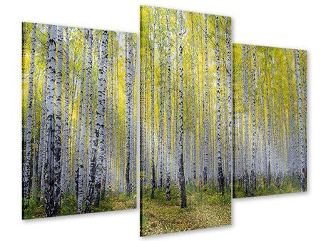 Acrylglasbild 3-teilig modern Herbstlicher Birkenwald