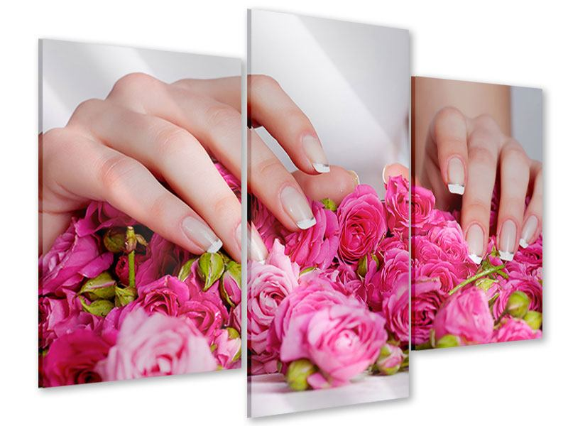 Acrylglasbild 3-teilig modern Hände auf Rosen gebettet