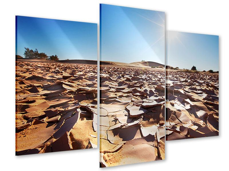 Acrylglasbild 3-teilig modern Dürre