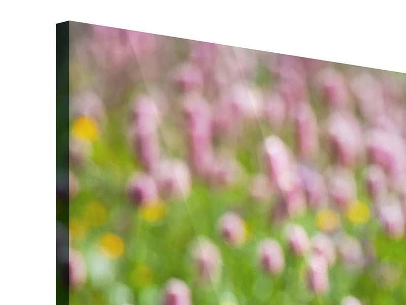 Acrylglasbild 3-teilig modern Der Wiesenklee