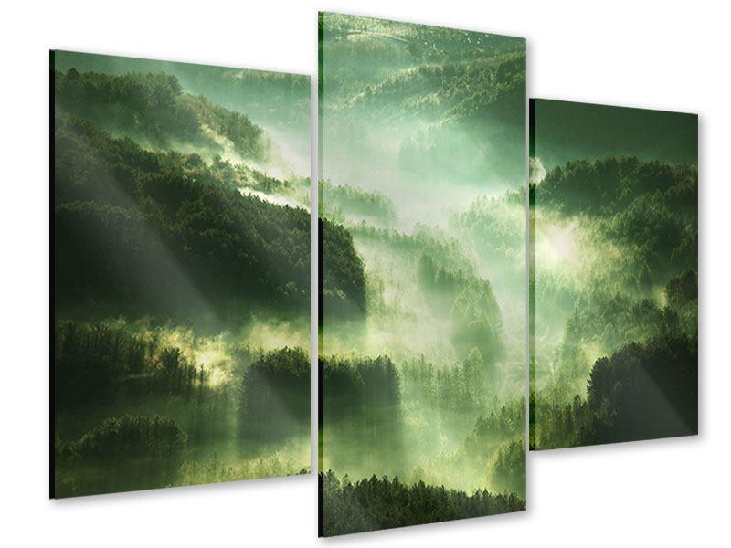 Acrylglasbild 3-teilig modern Über den Wäldern