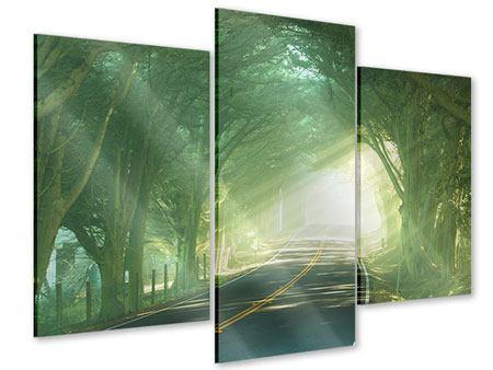 Acrylglasbild 3-teilig modern Die Allee