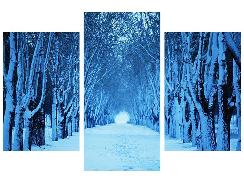 Acrylglasbild 3-teilig modern Winterbäume