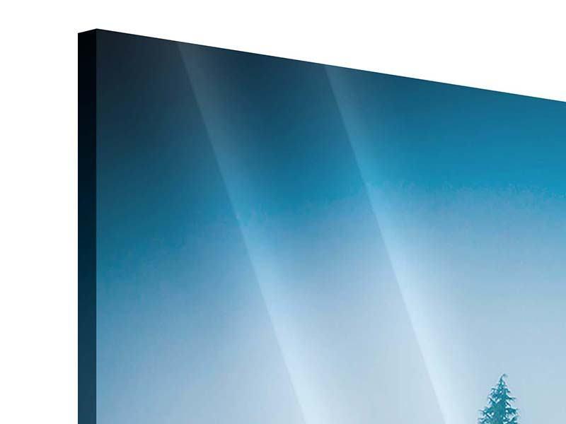 Acrylglasbild 3-teilig modern Geheimnisvoller Wald