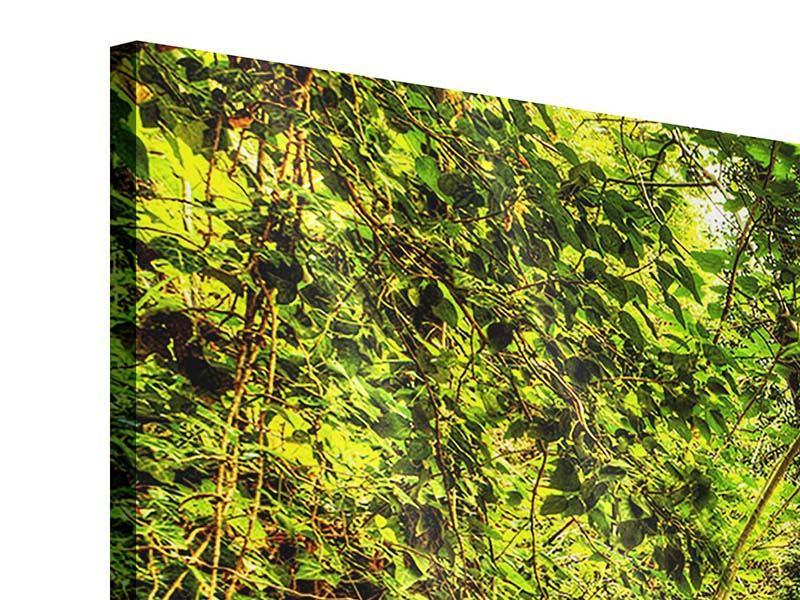 Acrylglasbild 3-teilig modern Wasserfall im Wald