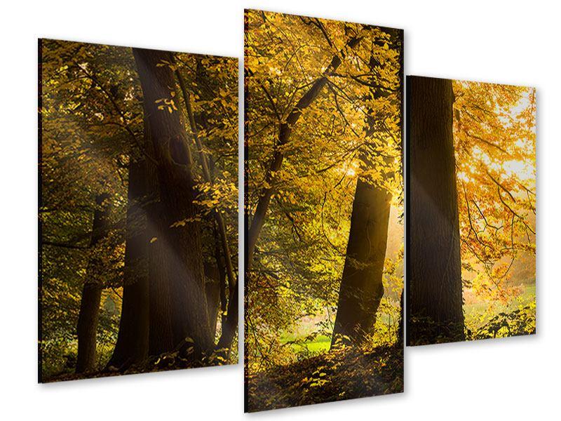 Acrylglasbild 3-teilig modern Herbstlaub