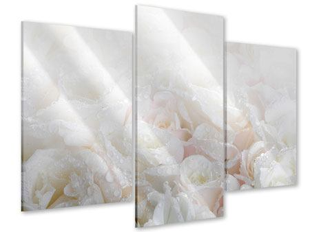 Acrylglasbild 3-teilig modern Weisse Rosen im Morgentau