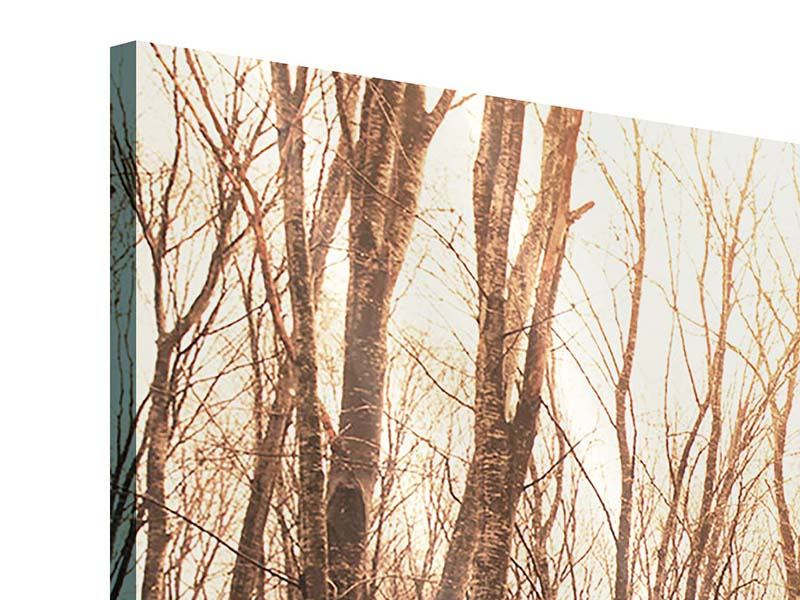 Acrylglasbild 3-teilig modern Der kahle Wald