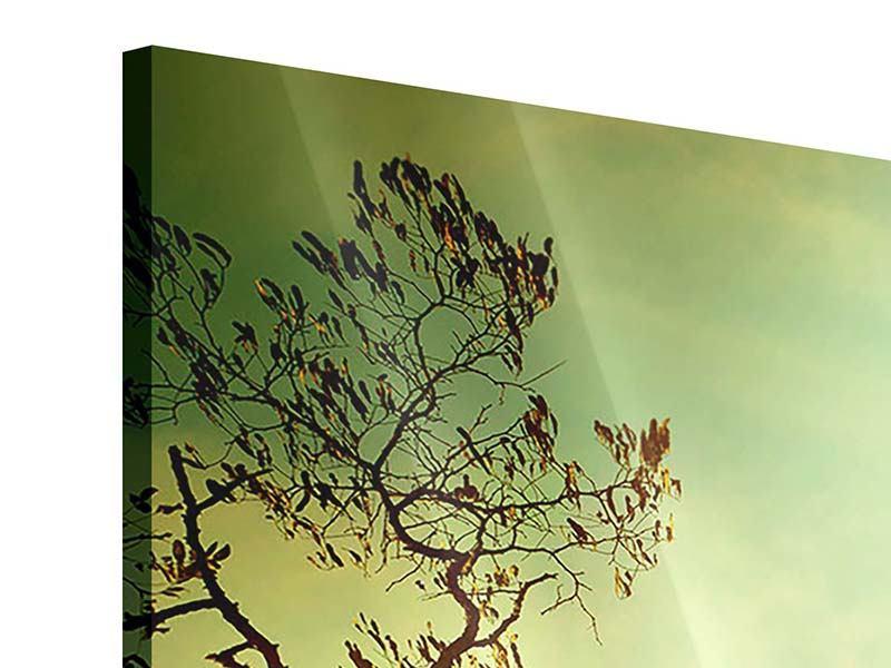 Acrylglasbild 3-teilig modern Bäume im Herbst